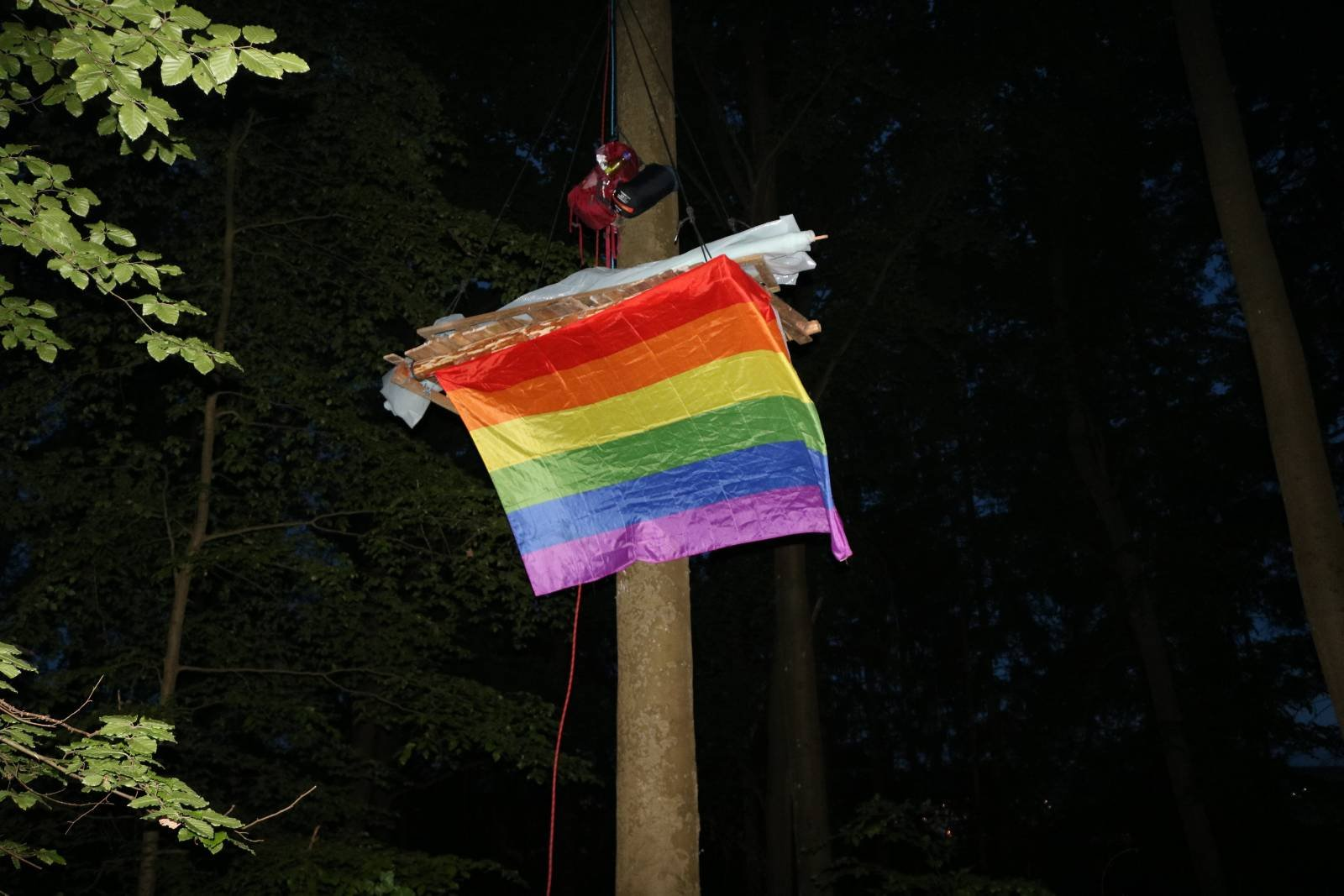 Eine Platform im Wald hat ein Regenbogen-Fahne